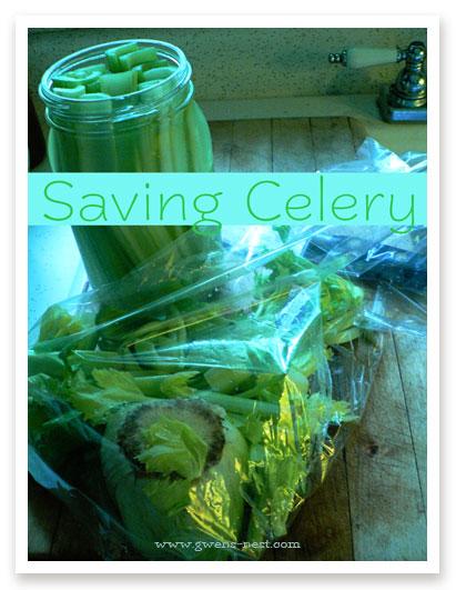 saving-celery
